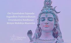Chanting Tryambakam Mantra For Health During The Pandemic